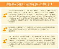 【カビ取り強力ジェル状カビ取り剤】カビトルデスPRO(カビトルデスプロ)UYEKI送料無料