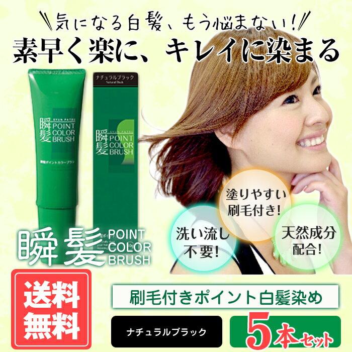 【送料無料】瞬髪ポイントカラーブラシ5本セット(ナチュラルブラック)