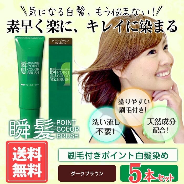 【送料無料】瞬髪ポイントカラーブラシ5本セット(ダークブラウン)