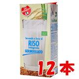有機発芽玄米ギャバライスミルク 1000ml×12本(1ケース) 【賞味期限:2021年11月25日】