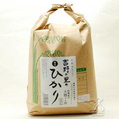 【平成27年産】 吉野ヶ里のひかり 陽光 玄米(品種:さがびより)5kg