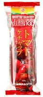 タカハシ有機トマトケチャップ(ソフトチューブ)500g