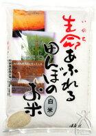 無農薬・無化学肥料米 :生命あふれる田んぼのお米白米(ひとめぼれ) 4kg