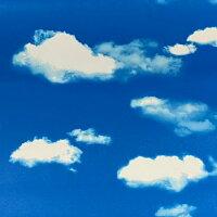 リメイクシート/壁紙シール/おしゃれ/雲/シート/空/青い空/青空/白/ホワイト/【簡単に貼れるお得な100cm巾】のり付きリメイクシート北欧ウッドdiy/かわいい/ステッカー/クロス/粘着シート/カッティングシート/フィルム/アクセント/貼る/はがせる/簡単/インテリア/扉/家具