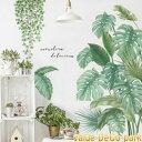 壁紙 はがせる 植物 送料無料 北欧 インテリア リメイク シート ウォールステッカー オシャレ 防水 カラフル 明るい 壁紙シール 全12色 横約45cm 防汚 手触り心地が良い シンプル