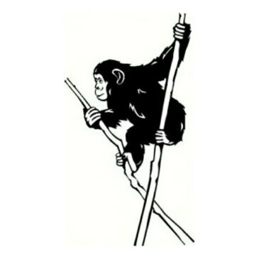 ウォールステッカー チンパンジー 動物 アニマル ウォールシール 転写式ステッカー 転写 北欧 シール 野生 おちゃめ 動物園英字 トイレ 英文 公園 花 メッセージ 木 ジャングル 竹 壁紙 モノトーン 黒 玄関 草 モダン カフェ かわいい 大きい 特大 森 自然