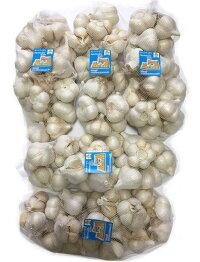 青森県産にんにく業務用10kgホワイト六片にんにくMサイズ中心