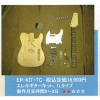 【送料無料】オリジナルエレキギターTL製作キット