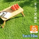 人工芝 水はけ ロール 1m×10m 芝丈35mm ピン 22本 4色立体感 透水穴つき リアル ふかふか 高品質 高密度 色落ちにくい 抜けにくい U字ピンつき 復元性 立体感 芝庭 人工芝生 ガーデニング アウトドア