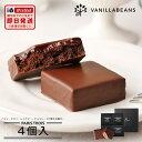 バニラビーンズ パリトロ4個入 チョコレート ギフト プチチョコレートケーキ 詰め合わせ 【お歳暮】 【あす楽】【VB】