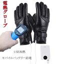 【在庫処分】電熱グローブ ヒーターグローブ USB給電式 ヒーター手袋 電熱手袋 電熱 インナーグロ ...