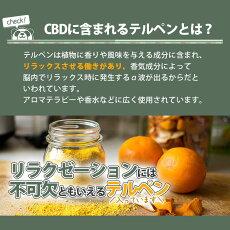 PREMIUMBLACKGREENAPPLE10ml/プレミアムブラックグリーンアップル味