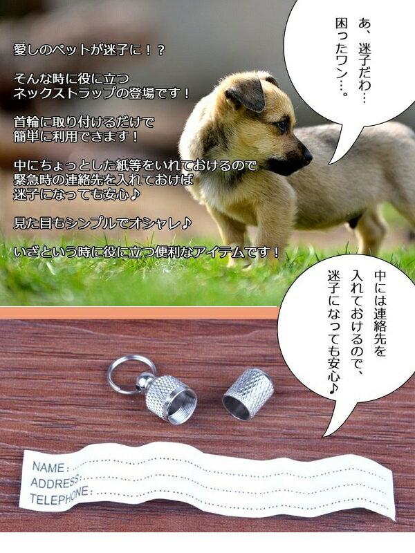 迷子防止 わんねこ ネック ストラップ 2個セット ドッグタグ 首輪 犬 猫 ペット 脱走防止【YDKG-kd】【smtb-KD】[定形外郵便、、代引不可]