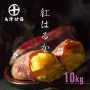 さつまいも 紅はるか 鹿児島 生芋 6kg 1箱 送料無料 S~L混載 土付き 美味しい 鹿児島県 大隅産 美容 ギフト べにはるか サツマイモ 焼き芋に まとめ買い