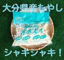 九州野菜本舗【ベジップル】で買える「万能もやし『名水美人』(200g入り【大分県産】」の画像です。価格は54円になります。