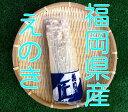 九州野菜本舗【ベジップル】で買える「えのき【100g】【九州産:福岡・熊本・長崎】【しゃきしゃき】」の画像です。価格は73円になります。