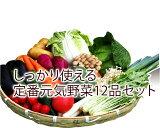 送料無料 しっかり使える定番野菜おまかせ12品セット 九州産