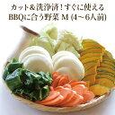 【BBQに合う野菜M(4~6人前/カットタイプ)】クール便|