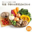 【特選 季節のお野菜詰合せ10種】夏季限定クール便|宅配野菜