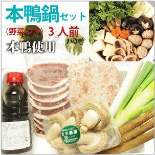 野菜付き本鴨鍋セット 八甲田本鴨肉 野菜3品 無添加スープ付 3人前
