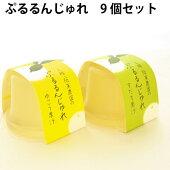 阪東農園ぷるるんじゅれギフトセット有機果汁使用95g9個入り