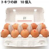【青森産】トキワの卵10個×4パック