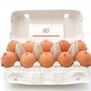 トキワ養鶏 トキワの卵 青森県産 20個