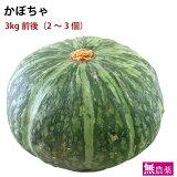 かぼちゃ 無農薬栽培 3kg前後(2〜3個)