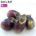 むかしなす 新潟県産 無農薬栽培 3kg