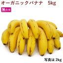 オーガニック バナナ 5kg フルーツ 果物