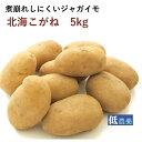じゃがいも 北海こがね 低農薬栽培 5kg 北海道産