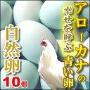 アローカナ卵