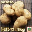 ステビアで育てたジャガイモ『トヨシロ』1kg