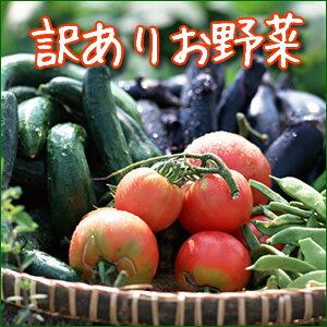 【訳あり規格外旬野菜1000円セット全4~5種でお届け】1日限定20セットまで!