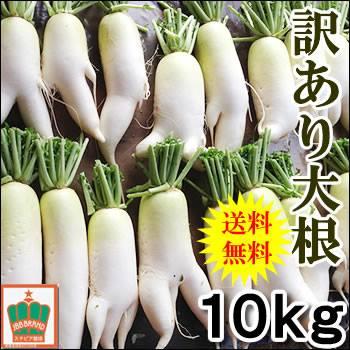 【訳あり品】こだわり農法の瑞々しく甘みある訳あり青首大根10kg