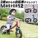 アイデス D-Bike Master 12 (ディーバイクマ...