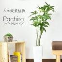 パキラM(高さ107) 人工観葉植物 光触媒 パキラ 水やり...