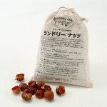 オーガニック洗剤ランドリーナッツレギュラー(soapnuts250g/お洗濯80-100回)