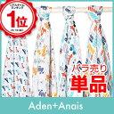 Aden-a_new2