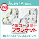Aden-e_new2