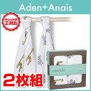 Aden-i_new2