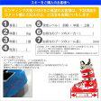 アトミック(ATOMIC) 2015-2016 REDSTER JR3+XTE045 スキー板 【専用ビンディング付き】 (Jr)