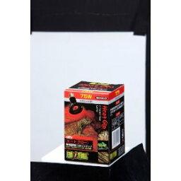 ヒートグロースポットランプ 75W EXO-TERRA 【保温ランプ/紫外線灯/UV灯/爬虫類用/両生類用/飼育用品】