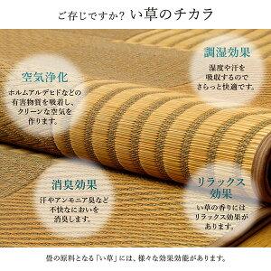 純国産/日本製い草花ござカーペット『京刺子』ベージュ本間3畳(約191×286cm)送料無料!