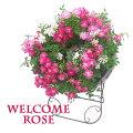 バラ,薔薇,ばら,ミニバラ,ギフト,母の日,鉢植え,プレゼント,可愛い,かわいい,苗