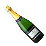 【スペインワイン】【スパークリングワイン】カヴァ セレクション エスペシャルブリュット マス・デ・モニストロル[辛口]
