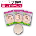 【P5倍】 スポンジ (高級真珠) 10枚 スポンジ フェイシャル エステ フェイシャルエステ