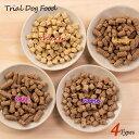 【送料無料・代引き不可】無添加国産 VISIONSオリジナルドッグフード 4種類お試しセット | dog visions