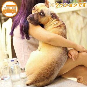 [ 送料無料 ] リアル犬クッション 50cm ( アニマル 動物 腰枕 携帯枕 犬 ワンコぬいぐるみ ペット 抱き枕 可愛い プレゼント 景 おもしろグッズ いたずら いぬクッション 子ども )
