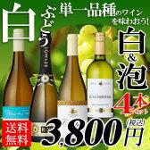 【送料無料】白ブドウ単一品種のワインを味わおう! 白・泡ワイン4本セット 辛口/やや甘口/ワインセット/フランスワイン/スペイン/ニュージーランド/スパークリングワイン/白ワイン【party】